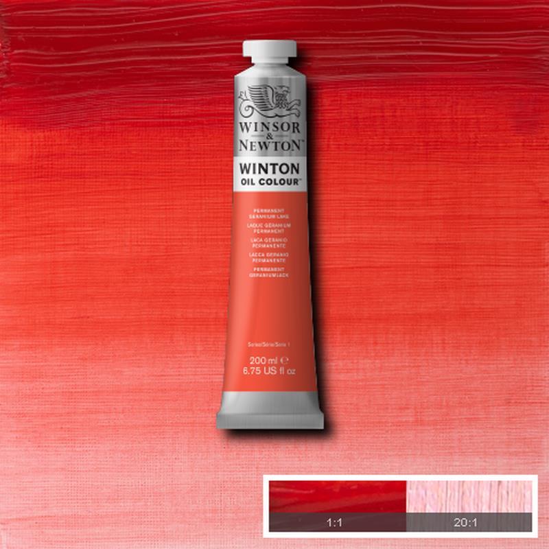 Colori ad Olio Winsor & Newton WINTON 200ml